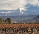 Mendoza Vineyards Volcano Aconcagua in the background