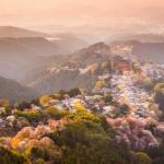 Japan landscape (600x600)