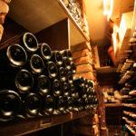 Bottles of red wine in wine cellar - 93338578