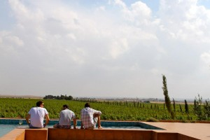 Jordan Winery 300x200 - Jordan: An unlikely winery visit