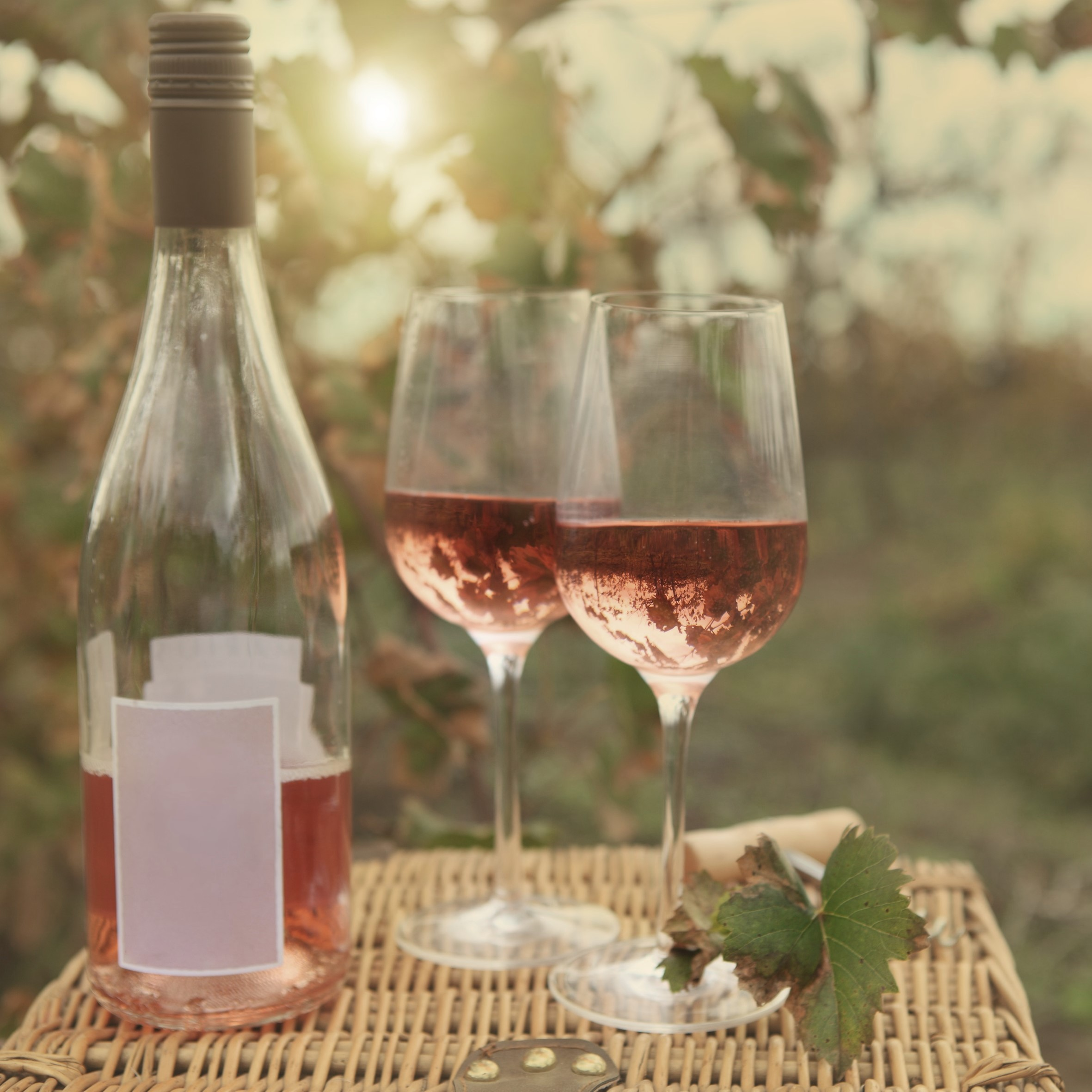 US ROse - Growing Rosés