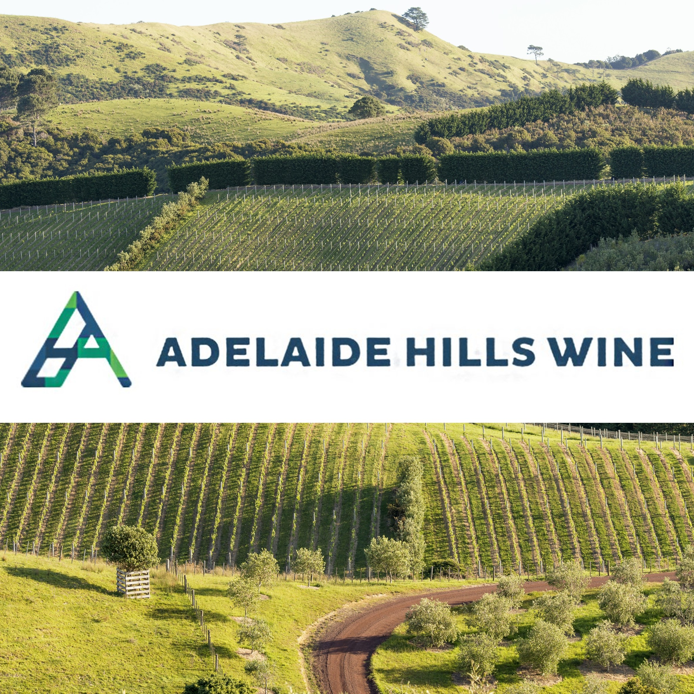 Adelaide Hills Thumbnail - Newsletter sign up
