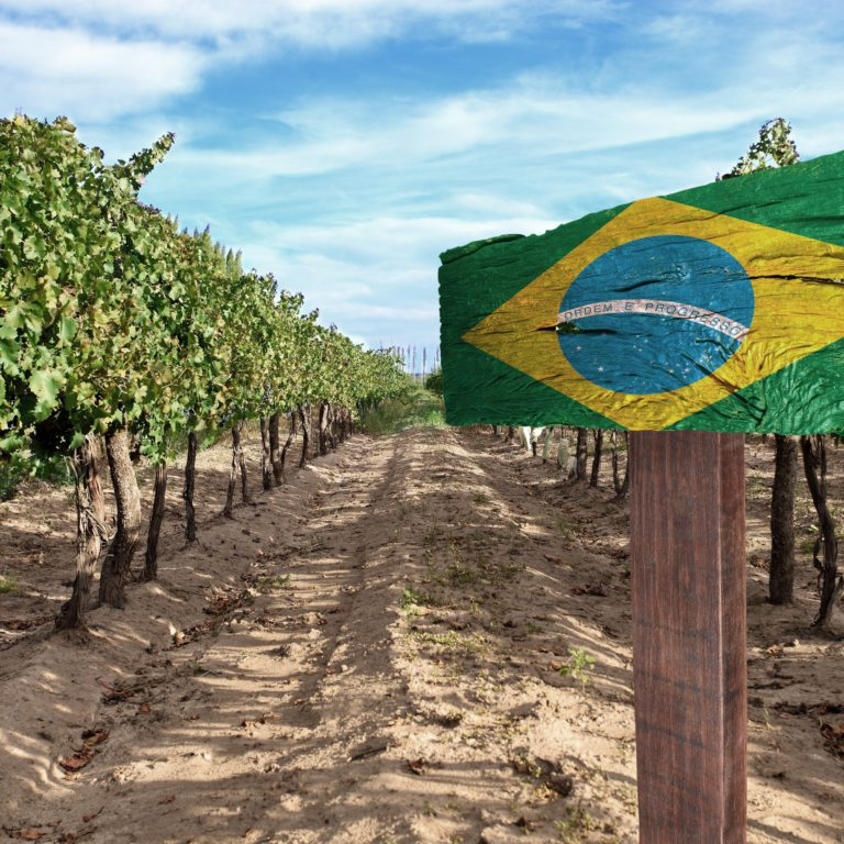 Brazil 768x768 - Behind the Global SOLA Report: Sustainable, Organic & Lower-alcohol Wine Opportunities 2018