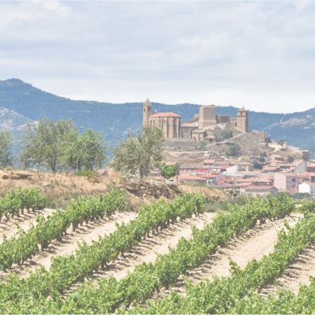 spain landscapes 2 450x450 - Belgian wine drinkers are consuming less but engaging more