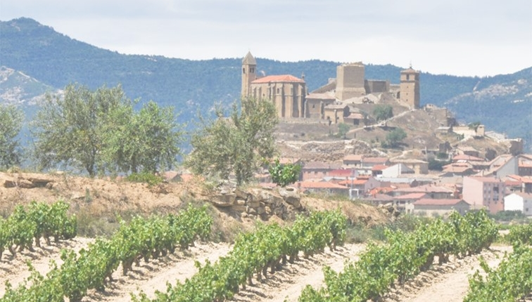 spain landscapes 2 756x430 - SOLA: Sustainable and Organic Wine Opportunities