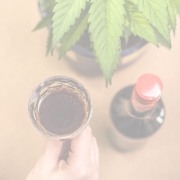 Cannabis pic 2 180x180 - Can Italian wine succeed without strong brands
