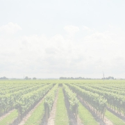 Idaho pic 180x180 - Idaho: A wine scene to watch