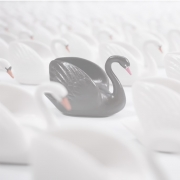 Black swan image 180x180 - Black swans and white wine: Planning in an uncertain world