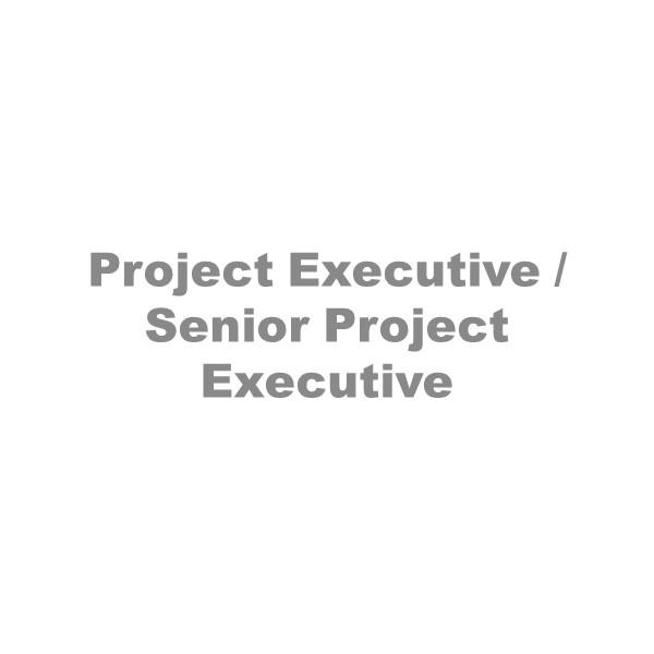 Project Executive Senior Project Executive - Careers