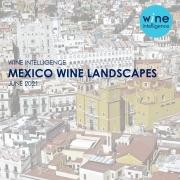 Mexico Landscapes 2021  180x180 - Mexico Wine Landscapes 2021